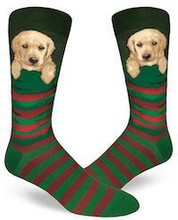 A yellow Lab puppy peeks out from the top of green and red striped socks.