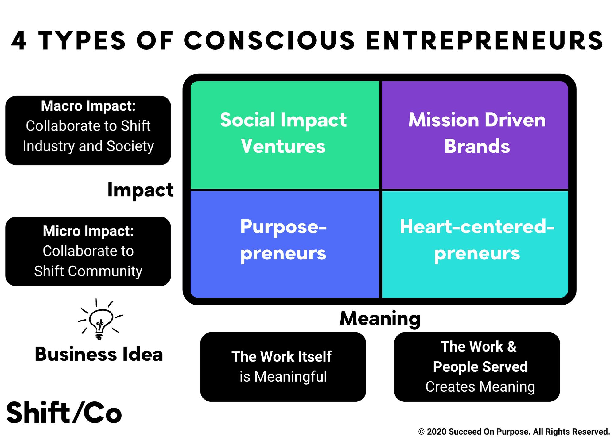 types of conscious entrepreneurs